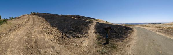 Diverging trails and firebreak near Vista Point entrance, after burn.