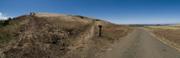 Diverging trails and firebreak near Vista Point entrance, before burn.