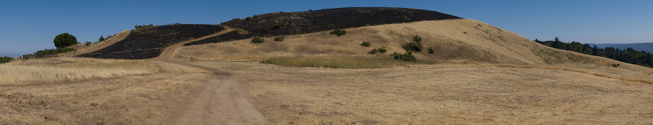 Looking south toward Borel Hill past Vista Point entrance, after burn.