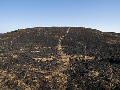 Looking up hill north of main parking lot, after burn.