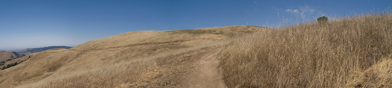 Looking north along Ridge Trail, before burn.