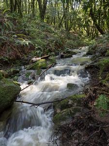 Peters Creek