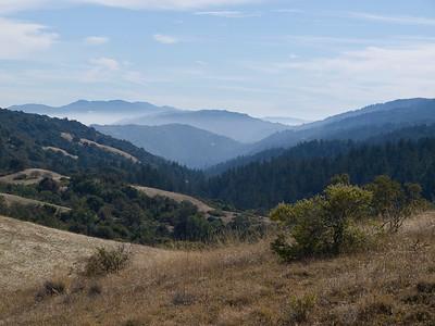 Monte Bello OSP, White Oak Trail, looking down Stevens Creek Canyon