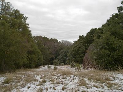Los Trancos OSP, Franciscan Loop Trail, snowy clearing, 8 Dec 09