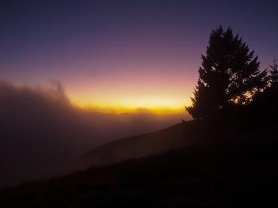 Fog and sunset, Long Ridge OSP.