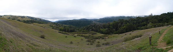 Monte Bello panorama (looking down Stevens Creek Canyon)