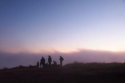 Dusk and fog at the Stegner Bench, night hike, Long Ridge OSP.