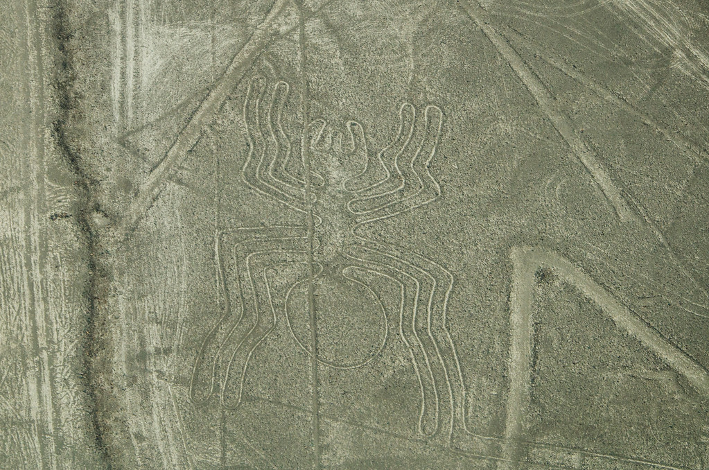 Spider of the Nazca Lines