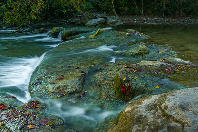 Early signs of Autumn along Barton Creek.