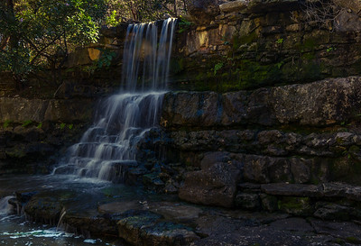 Waterfall at Zilker Botanical Gardens.