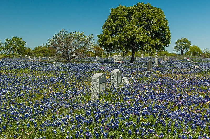Union Band Cemetary, Texas Hill Country