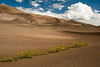 Great Sand Dunes National Park, 2013