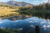 Beautiful early morning reflection at Trout Lake in Yellowstone National Park