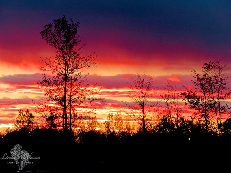 Shades Of Red Sunset