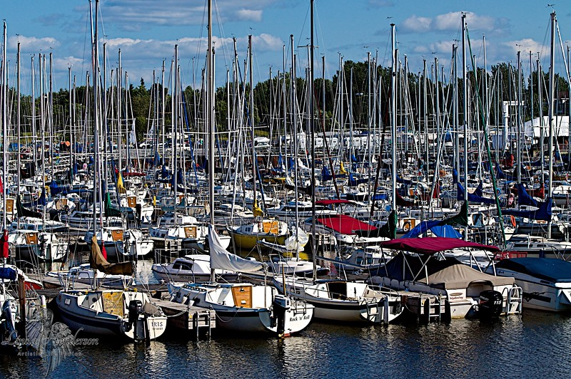 Marina Parking Lot