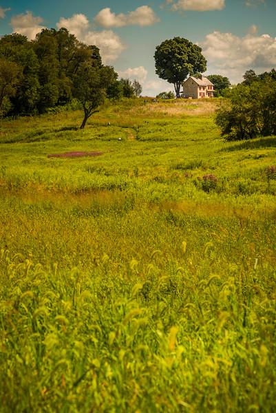 Meadow 2, Longwood Gardens, Longwood, PA, 2014.