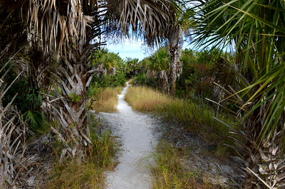 Cape_Coral_Rotary_Park-1
