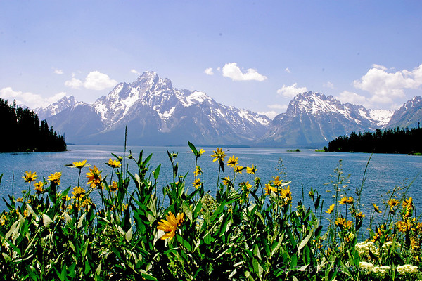 Jackson Lake, Teton National Park, Wyoming