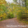 Ken Lockwood Gorge 10-18-15