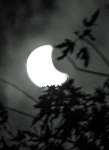 21AUG17Eclipse-6
