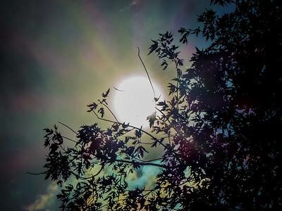 21AUG17Eclipse-7