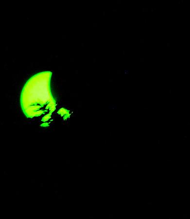 21AUG17Eclipse-5
