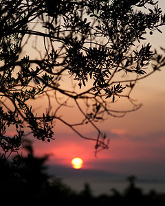 Aegina Sunset