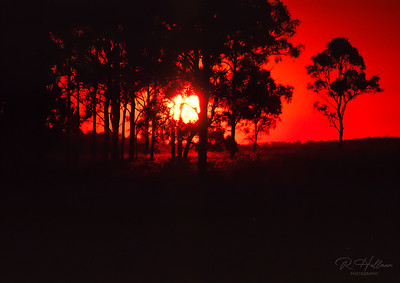 Australia evening