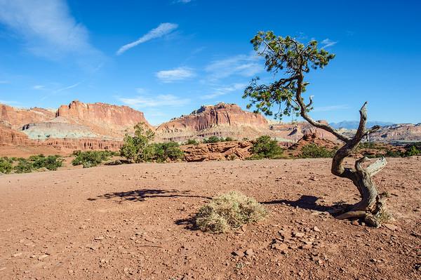 20121020 Utah 12 005