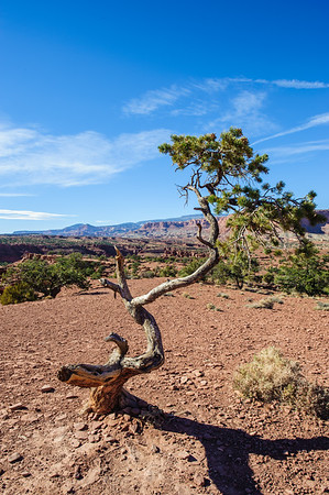 20121020 Utah 12 008