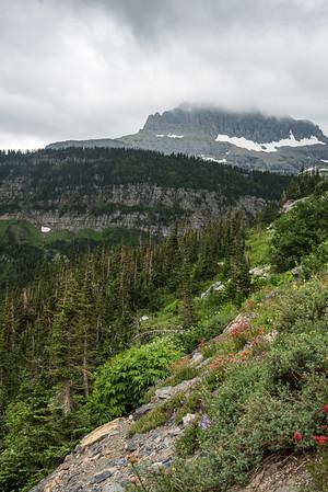 20150712 Glacier NP and Waterton 021