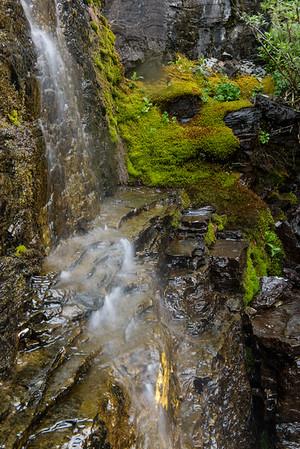 20150712 Glacier NP and Waterton 035