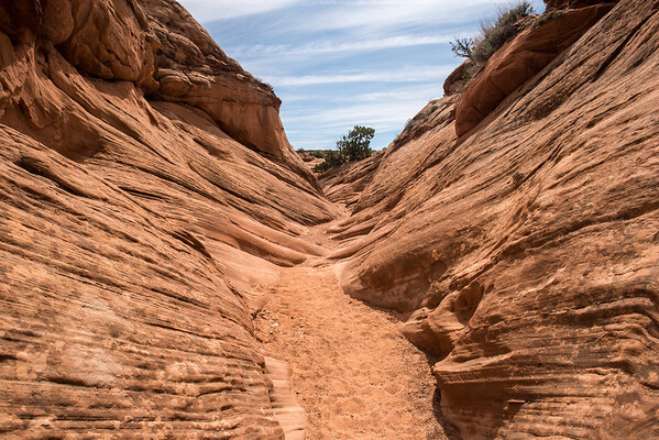20160327 Peekaboo and Spooky Canyons 055