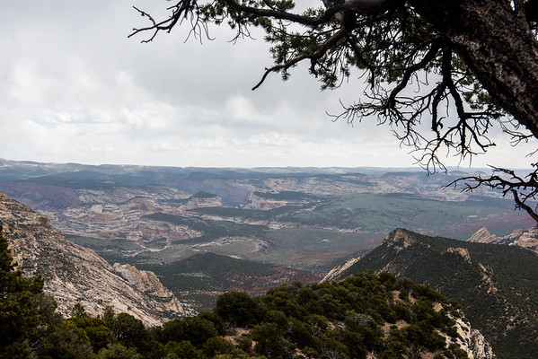 20160423 Dinosaur National Monument 019