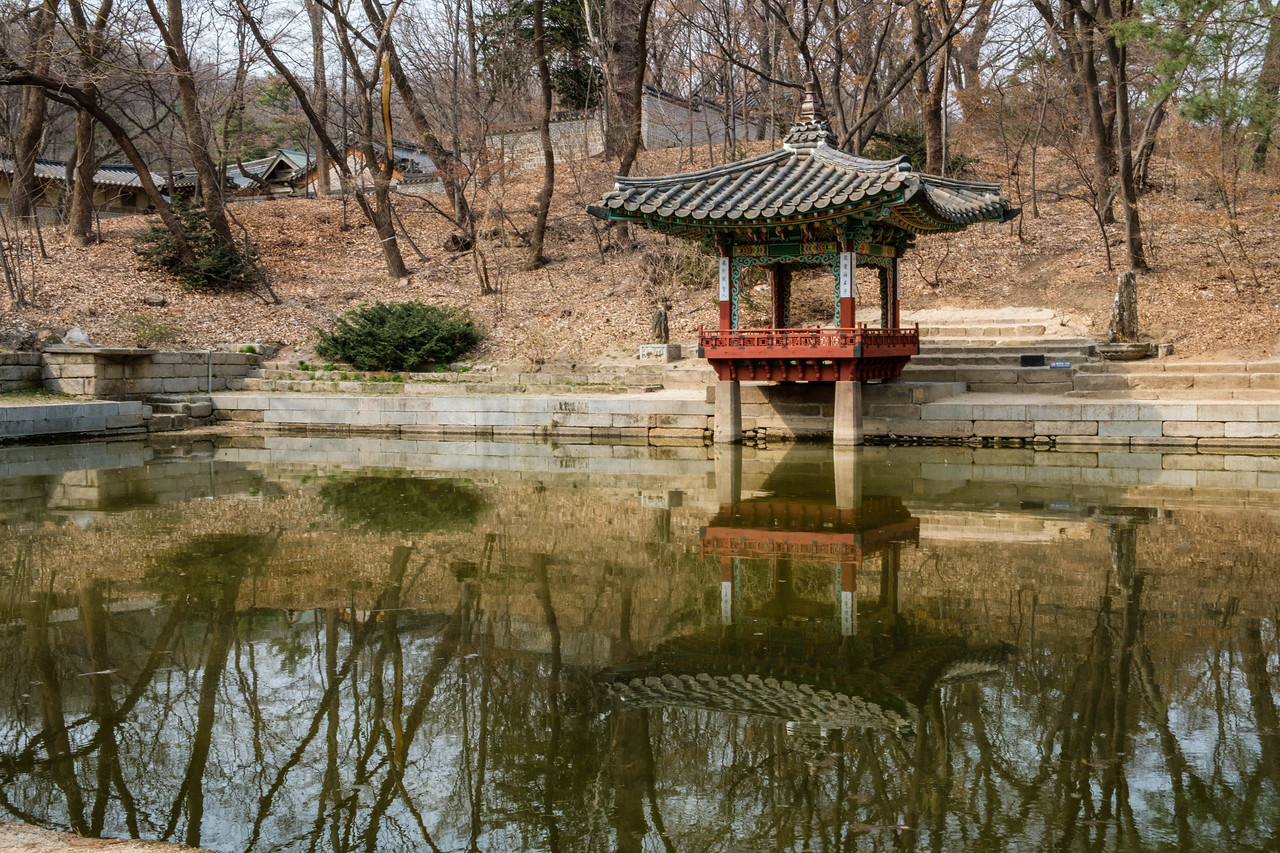 20170325 Changdeokgung Palace 111