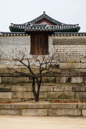 20170326 Changgyeongung Palace 008