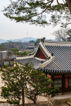 20170326 Changgyeongung Palace 011