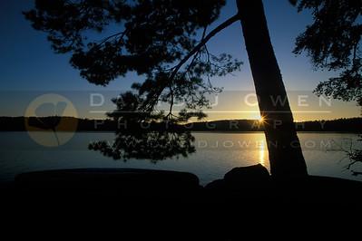 15594V Argo sunrise