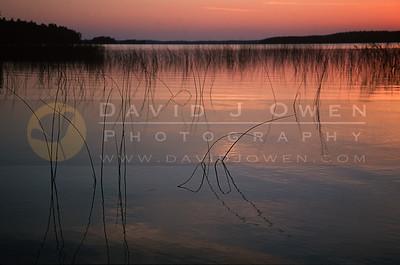 15492 Sturgeon Lake sunset reeds