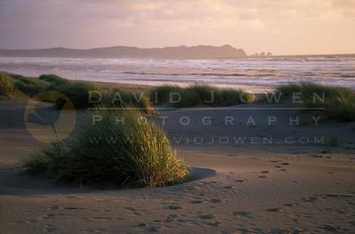 13731 PN Chiloé Beach y punta