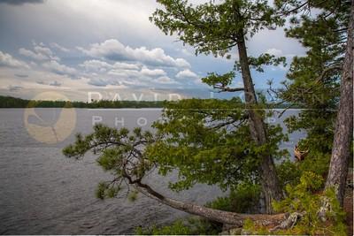 20120604-118-1 Williamson Island Lake Insula view to N HDR