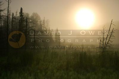 052805-05V-2 Armstrong Creek sunrise
