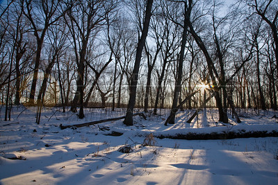 20090110-002 Baker Park Preserve