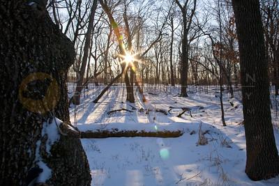 20090110-001 Baker Park Preserve