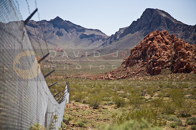 20090328-020 Valley of Fire fence