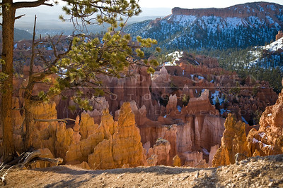20090317-037 Hoodoos below Sunrise Point