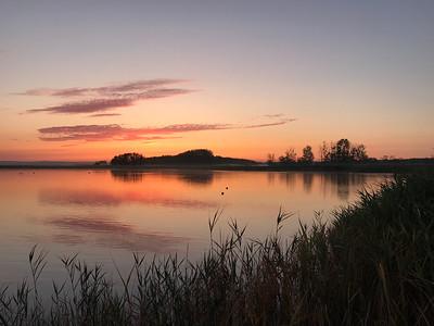 Julimorgon vid Vegeåsmynning/Sandön (mobilfoto)