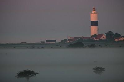 Ölands södra udde, fyrbyn i gryningsljus