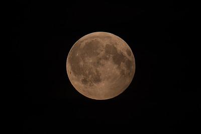 Månen, under en partiell månförmörkelse