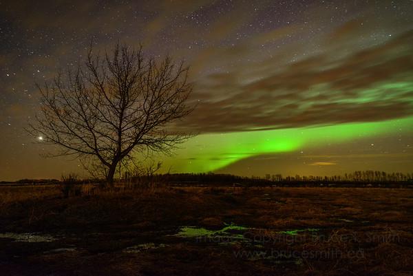 90 Aurora Silhouette